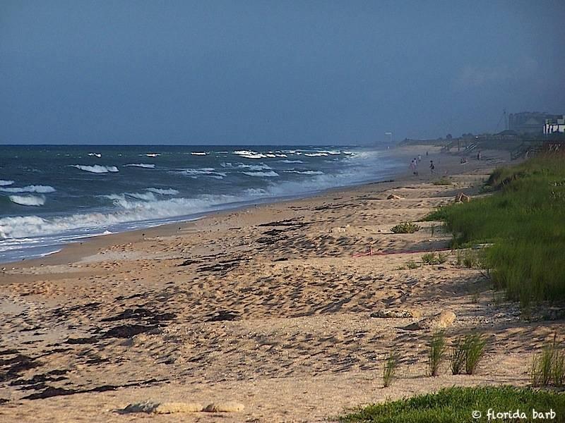 beach800FB2
