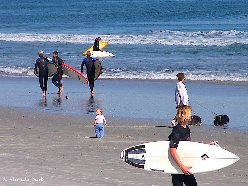 beachday800FB