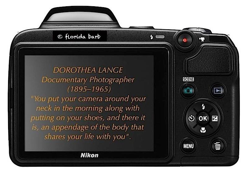 dorotheaqoutecamera800FB