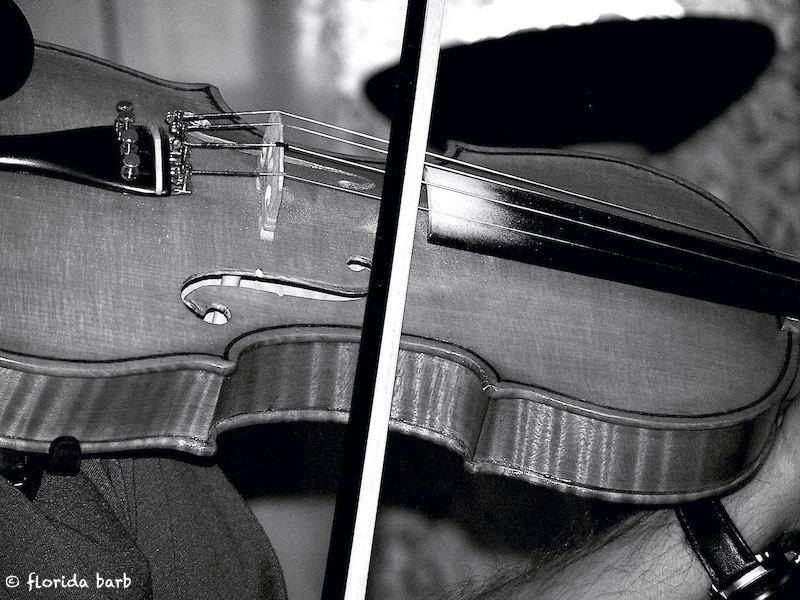 fiddle800FB2