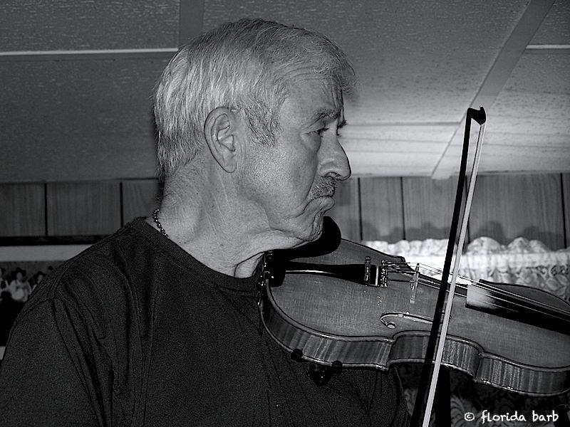 fiddler800FB