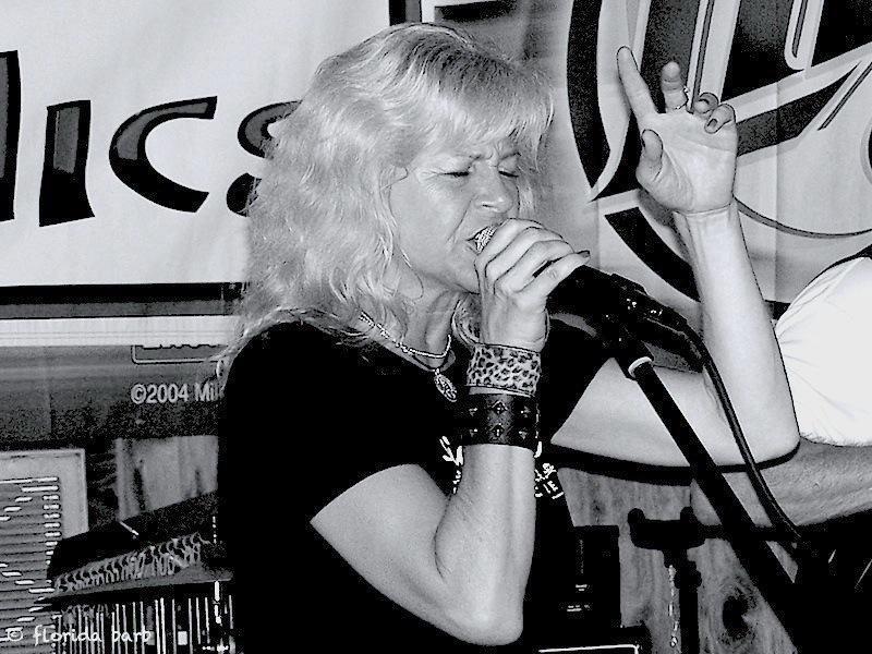 singer800FB3