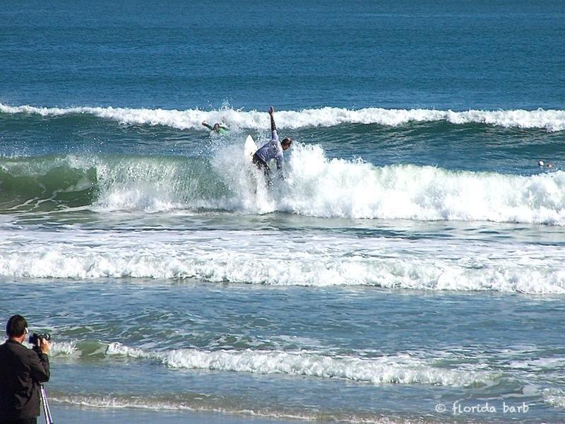 surfer800FB