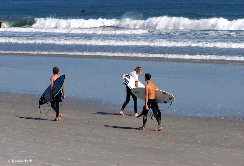 surfers800FB